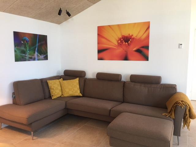 brun sofa ved dagslys 2